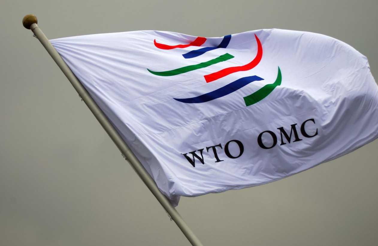 Кризис ВТО и ошибка российских караул-патриотов
