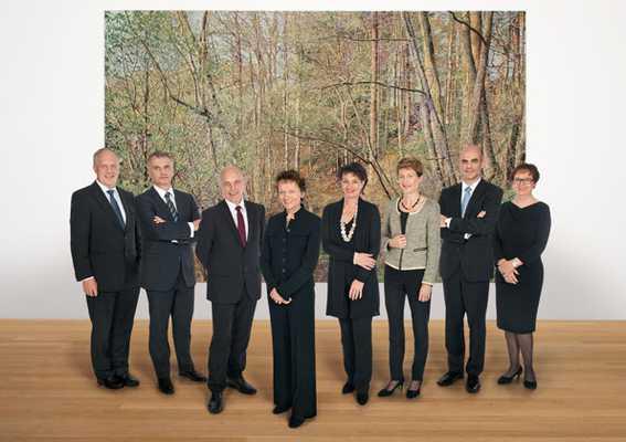 Федеральный совет, версия 2012 года
