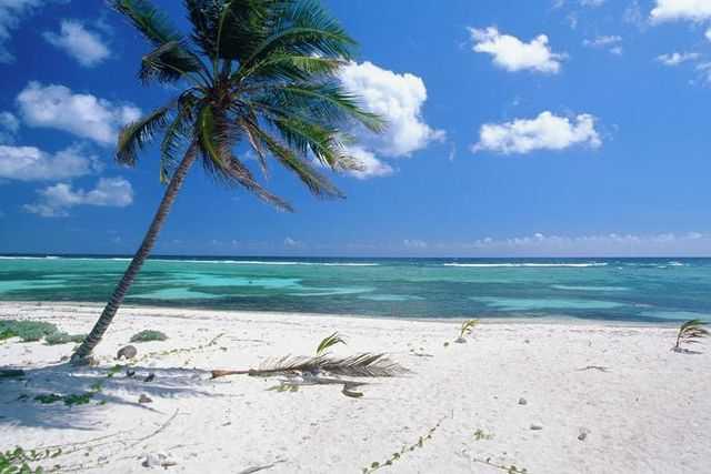 Сокровища принято прятать на островах