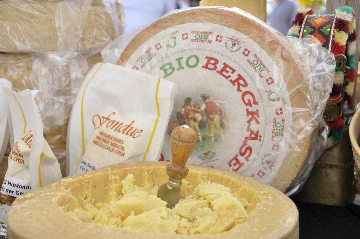 Био-сыр